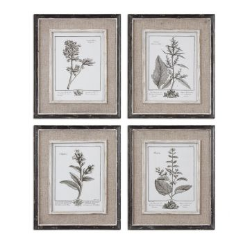 Uttermost Set of 4 Casual Grey Study Framed Art