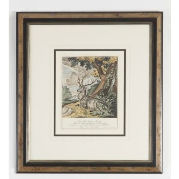 Chelsea House Ant Colored Stags-B Wall Art