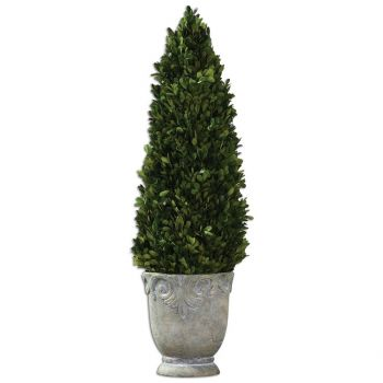 """Uttermost Boxwood 29"""" Cone Topiaries in Light Stone"""